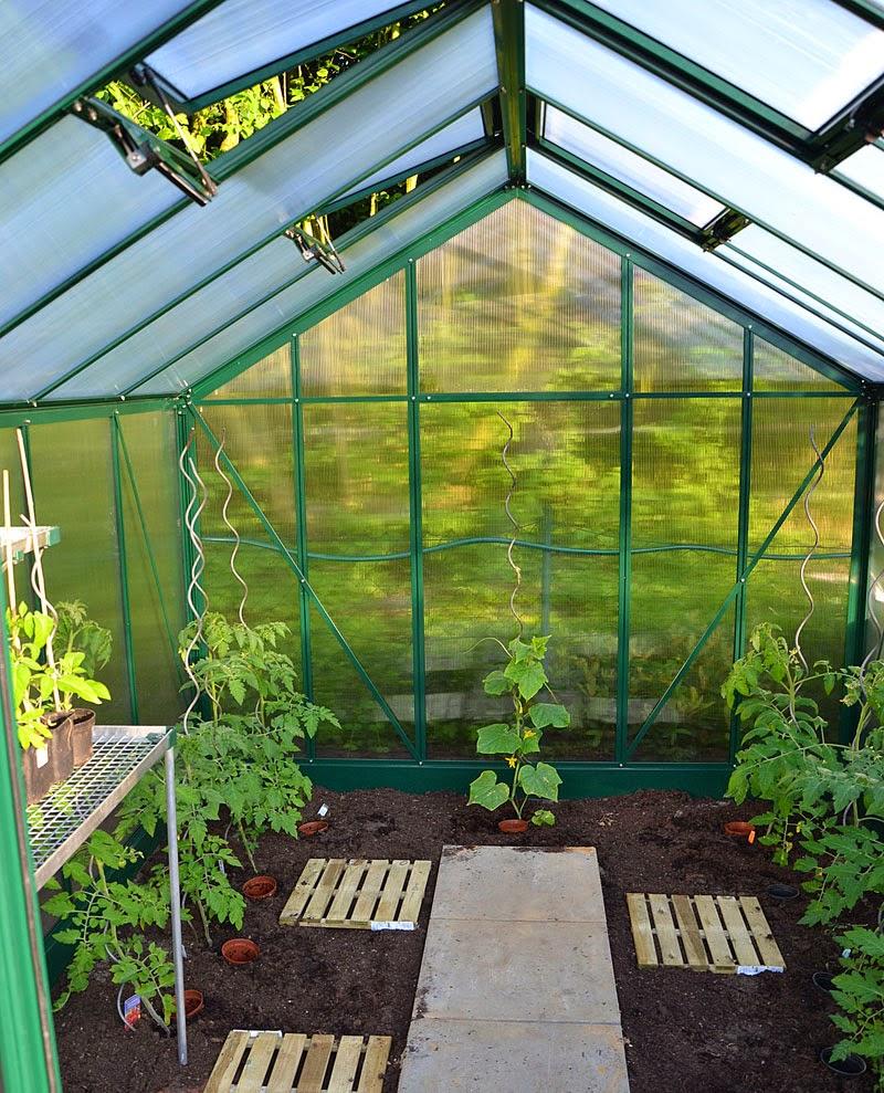 tomaten und gurken selbst gezogen lecker samen zu verschenken allegrias landhaus. Black Bedroom Furniture Sets. Home Design Ideas