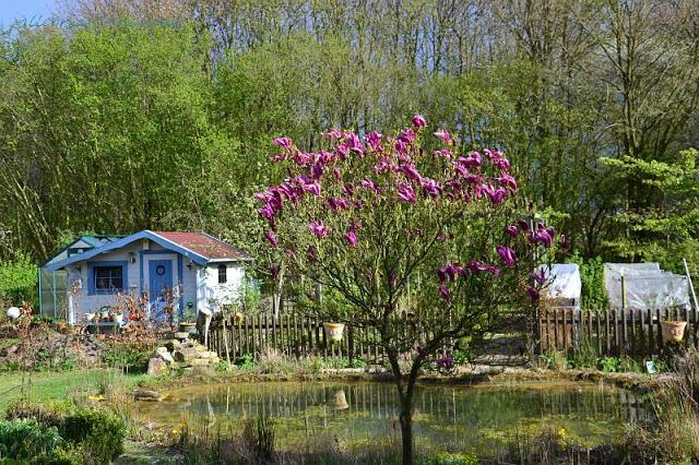 Allegrias Garten
