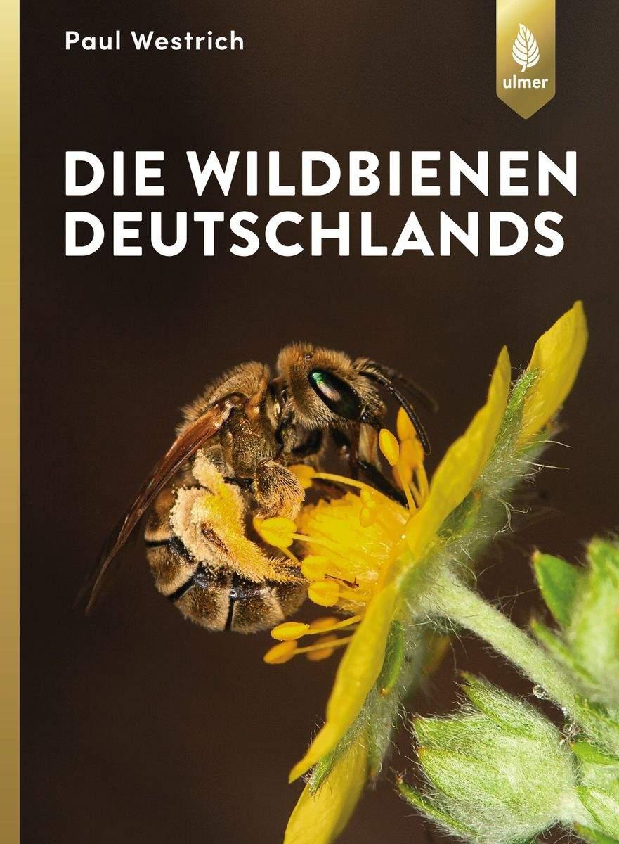 Buch Die Wildbienen Deutschlands