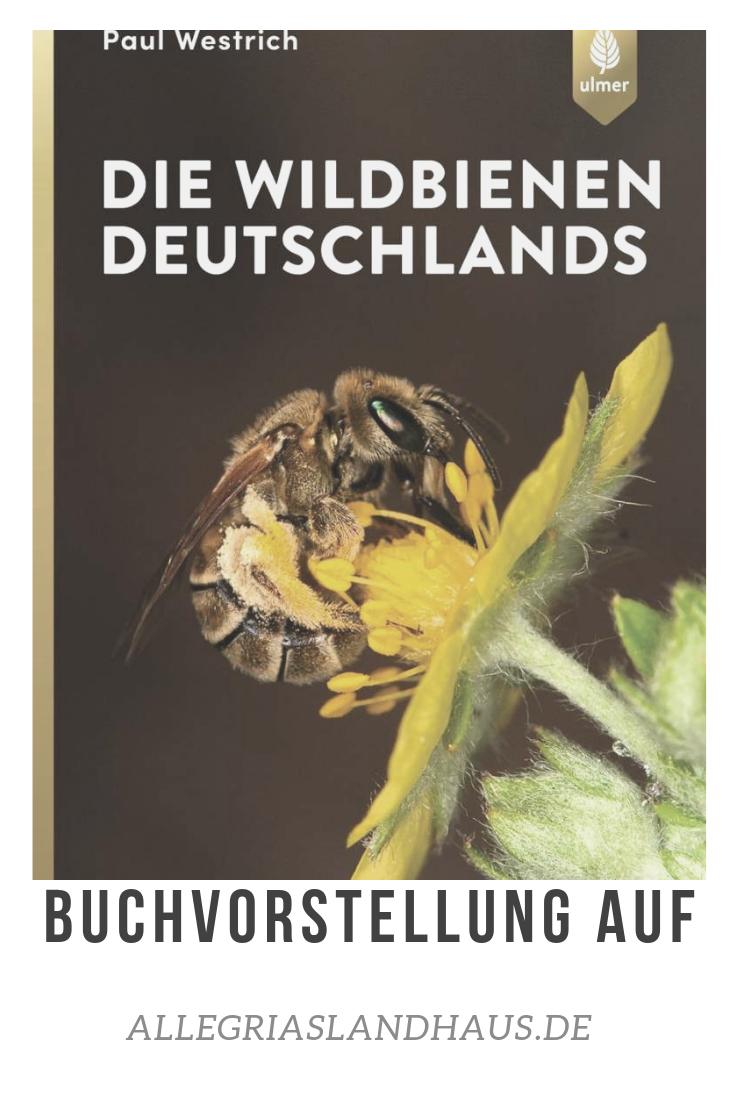 Wildbienen Deutschlands