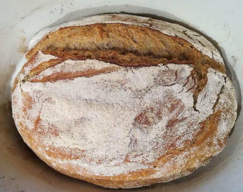 fertiges Brot noch im Topf