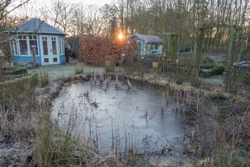 vereister Teich beim Sonnenaufgang